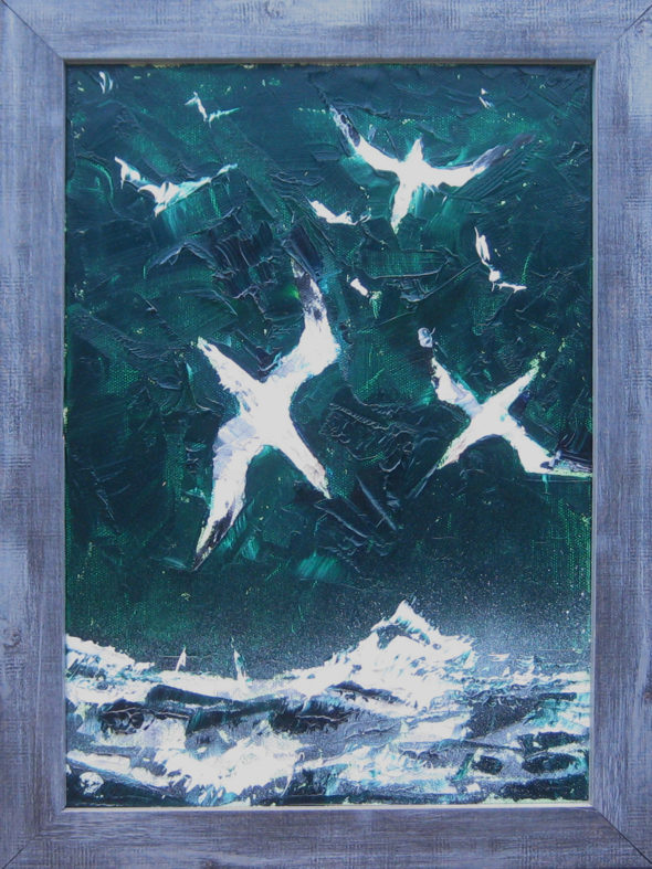 'A Dive of Gannets'